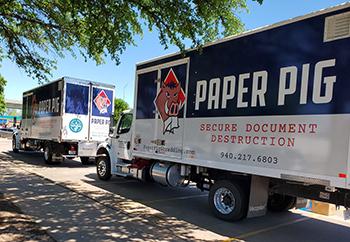 Paper Pig - Paper - Shredding